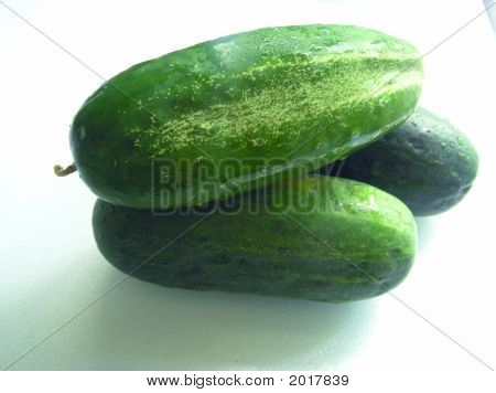 Three Fresh Tasty Green Cucumbers