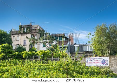 Paris France - August 14 2016: The Vineyard of Montmartre the most famous of the Parisian vineyards. Its wine is quite expensive; the earnings are used to help social institutions.