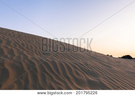 Upward picture of sand dunes in Thar Desert located close to Jaisalmer the Golden City in India.