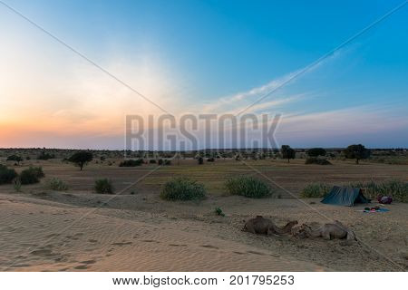Wide angle picture of sand dunes camels and camping during sunset time in Thar Desert located close to Jaisalmer the Golden City in India.