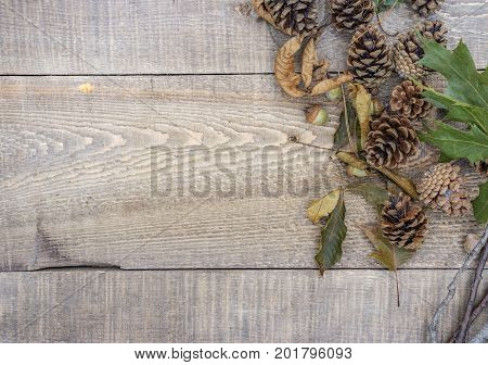 Autumn Background And Border Of Rustic Wood With Acorns, Sticks, Twigs Leaves And Pinecones