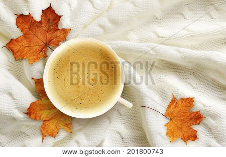 Cup of coffee and dry autumn maple leaves on folded white knitted plaid for background