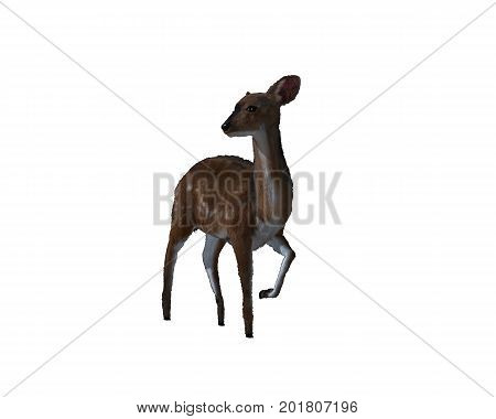 Computer generated 3d illustration of a deer