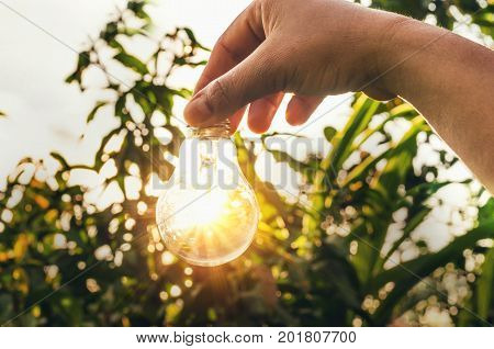concept light bulb with sunset and saving power energy in nature