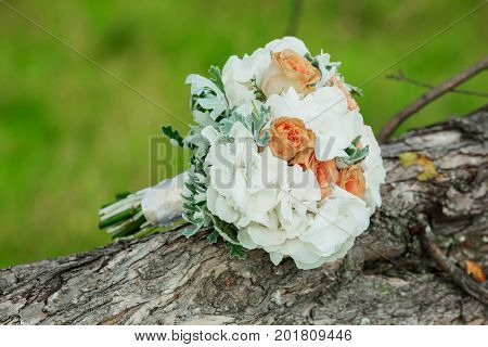 Wedding bouquet . The bride's bouquet. Bouquet of red and pink flowers, black berries and greenery, with a ribbon of color Marsala lies on a log by the lake