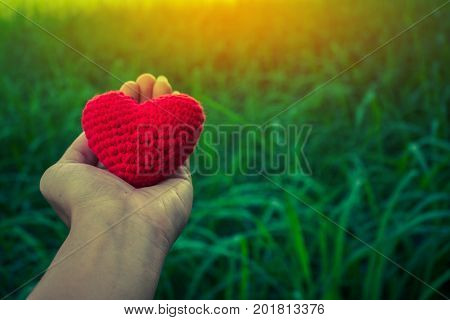 Hand give heart love to each other Concept give love.