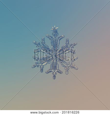Real snowflake at high magnification. Macro photo of small stellar dendrite snow crystal with hexagonal symmetry and long arms with side branches. Snowflake glittering on smooth gradient background.