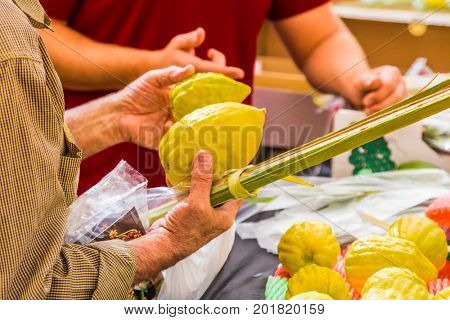 Customers choose citrus - etrog and lulav. Ancient Jewish autumn holiday Sukkot. Sale of ritual plants on the traditional pre-holiday market in the capital of Israel, Jerusalem