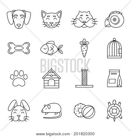 Linear icon set of domestic pets and his tools. Zoo magazin vector pictures isolated. Hamster and turtle, domestic linear dog and cat illustration