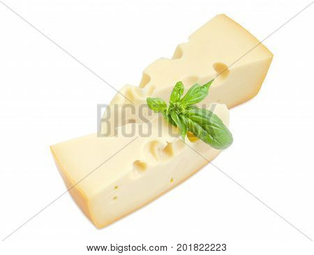 Two pieces of the Swiss cheese with cheese's eyes decorated with twig of the green basil on a white background