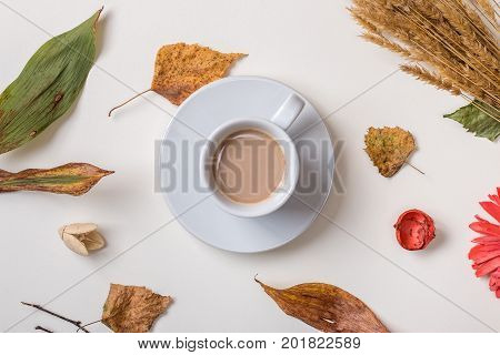 Autumn background: from above view of fallen leaves dry petals dried flowers and dry plants simple rustic branches and wheat bunch cup of coffee in center. Top view. Flat lay.