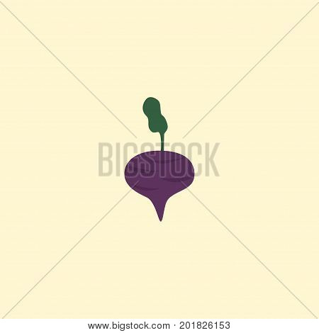 Flat Icon Beet Element. Vector Illustration Of Flat Icon Radish Isolated On Clean Background