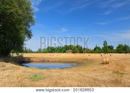 Agricultural landscape with straw rolls in the fields