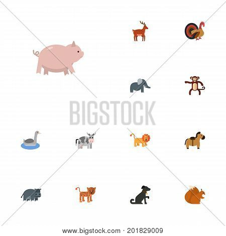 Flat Icons Hippopotamus, Chimpanzee, Kine And Other Vector Elements