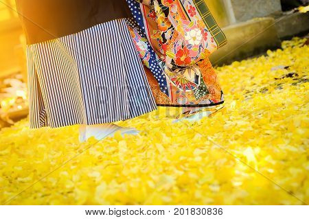 Traditional japanese ceremony wedding lovely day, young married couple wear kimono under golden ginkgo leaves withs shining sunlight in shrine temple at autumn season