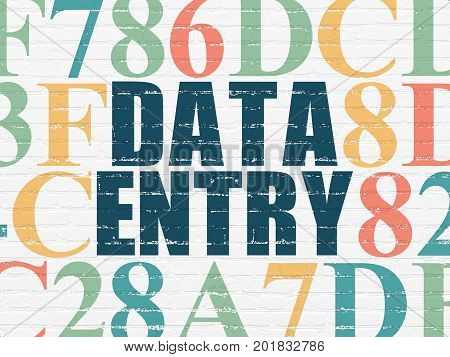 Data concept: Painted blue text Data Entry on White Brick wall background with Hexadecimal Code