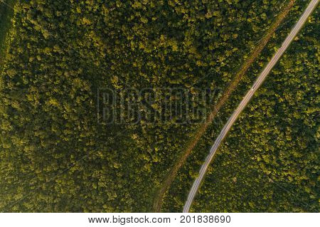 Top View of Highway in Forest