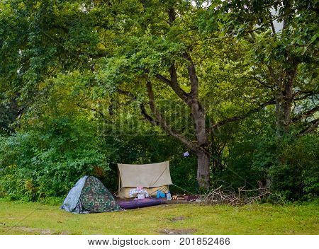 Camping Tents At Campground In Forest