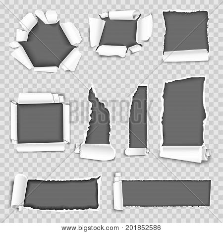 Paper torn holes isolated on transparent background. Vector ragged edges and torn or tattered paper hole texture elements of different shapes