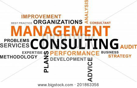 A word cloud of management consulting related items