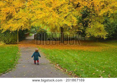 Autumn. Little girl runs away in a park with yellow trees and fallen leaves