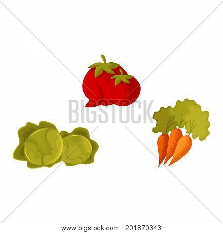 Set of cartoon style vegetables - tomato, carrot and cabbage, vector illustration isolated on white background. Cartoon style raw whole tomato, carrot and cabbage vegetables, farm product