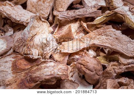 Dried Mushrooms Cep Boletus Edulis Background Texture extreme closeup