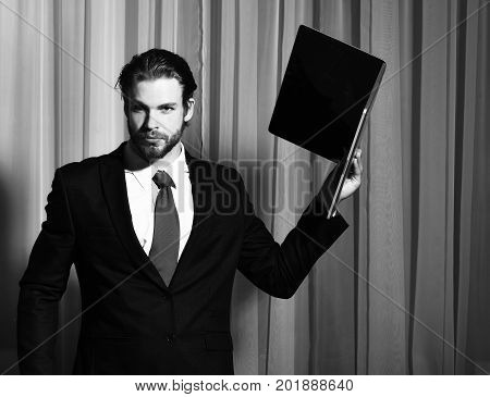 Bearded Man, Businessman With Laptop In Suit And Red Tie