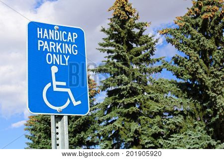 Handicap Parking Sign With Trees In The Background
