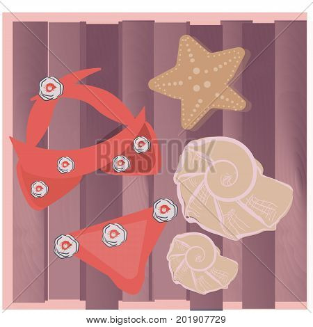 Swim suit and seashells on wooden background