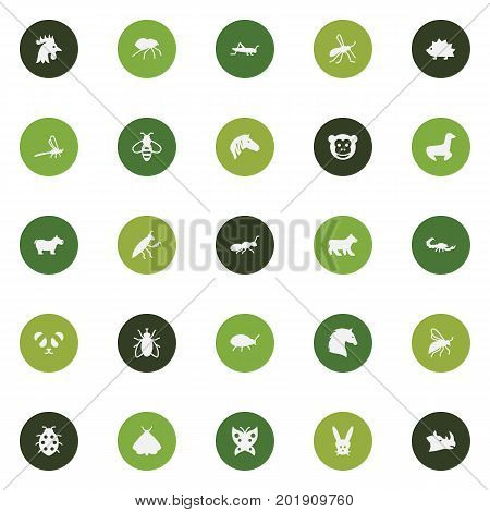 Collection Of Rooster, Gnat, Housefly And Other Elements.  Set Of 25 Zoology Icons Set.