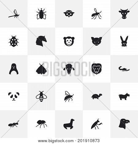 Collection Of Housefly, Diver, Ape And Other Elements.  Set Of 25 Animal Icons Set.