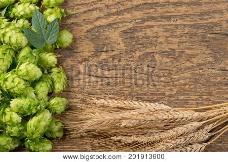 Hop Cones with Barley on the Woden Desk with Place for Text.