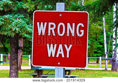 Closeup of a wrong way sign with trees in the background