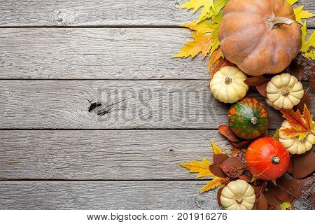 Autumn background with yellow maple leaves and pumpkins. Board of fall harvest on aged wood with copy space. Mockup for seasonal offers and holiday post card, top view