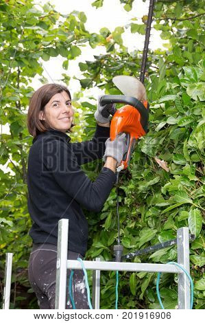 Middle Age Woman Suburban Backyard Trimming Hedges With Electric Hedge Trimmer Tool