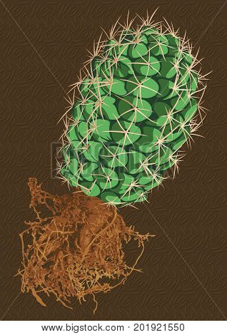 Vector prickly cactus with brown root on brown background.