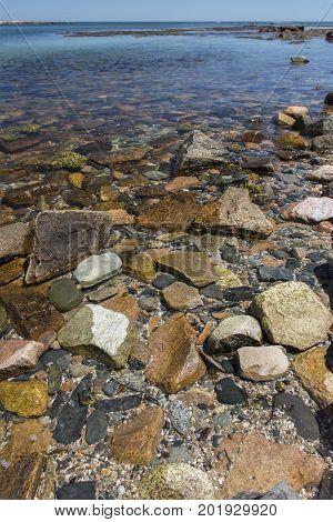 Acadia Shoreline - Wonderland
