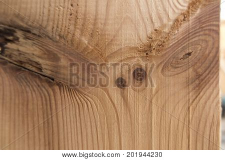 fragment of the pine board with evident jarfuls as the background