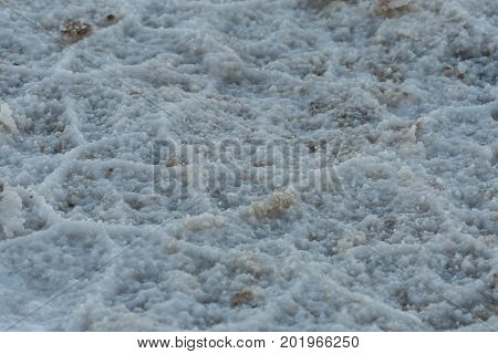 Crusty Salt In Flats
