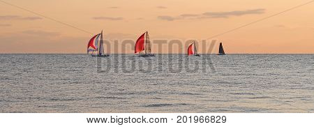 In the sun's golden afterglow four boats are sailing on Lake Michigan near St. Joseph Michigan.