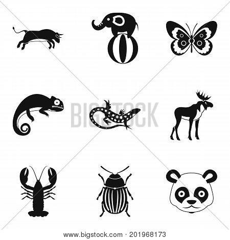 Rare animal icons set. Simple set of 9 rare animal vector icons for web isolated on white background