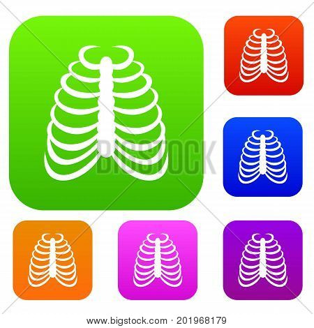 Rib cage set icon in different colors isolated vector illustration. Premium collection