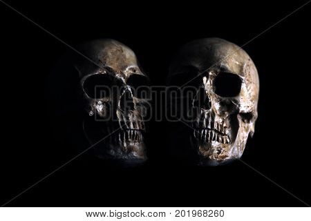 Halloween Skull. Spooky Halloween Skull isolated on black.