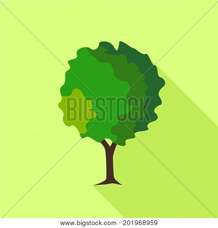 Round deciduous tree icon. Flat illustration of round deciduous tree vector icon for web