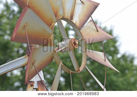 A metal weather vane in the garden