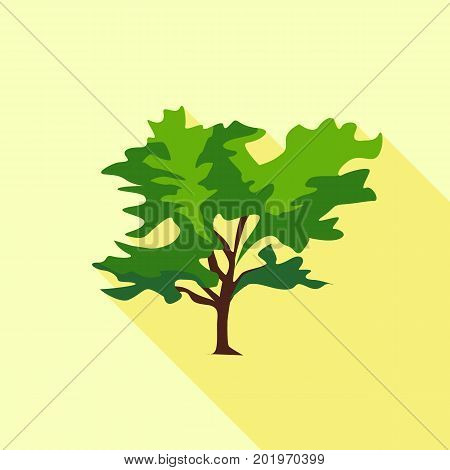 Tree large leaves icon. Flat illustration of tree large leaves vector icon for web
