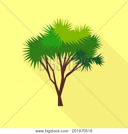 Needle palm tree icon. Flat illustration of needle palm tree vector icon for web