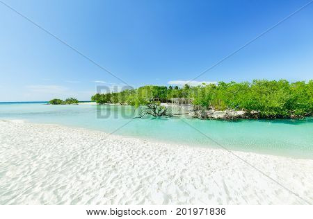 gorgeous amazing inviting view of tropical white sand beach and tranquil turquoise ocean lagoon on blue sky background at Cayo Coco Cuban island, sunny summer beautiful day