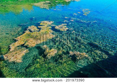 abstract view of a nice, beautiful natural clear ocean water pond background in tropical garden with seaweeds floating on water, you could see the bottom of the pond the water so clean, Cayo Coco island, Cuba